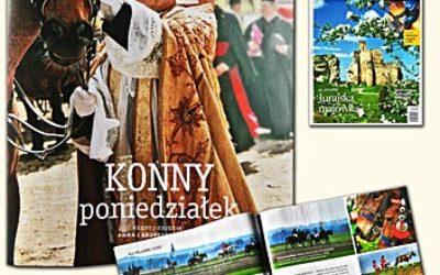 plwita_konnaproc_www