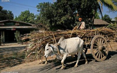 birma_burma_myanmar_travelphoto_pl_08